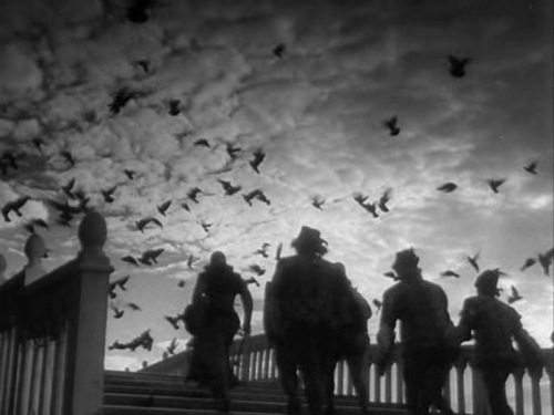 Otelo, filme de Orson Wells de 1952, baseado na peça de William Shakespear foi filmado erraticamente, ao longo de três anos. Apesar da falência do produtor inicial, Wells investiu o seu próprio dinheiro para concretizar um dos dramas mais representativos da expressão cinematografica.